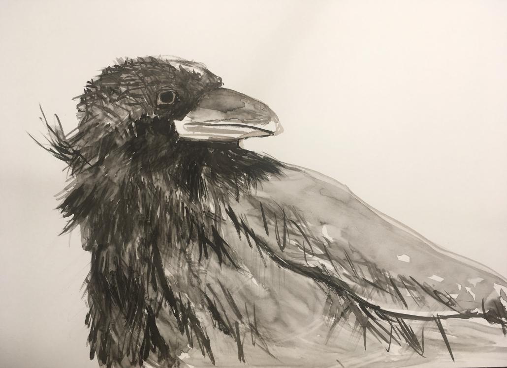 "Sylvia Gatz. ""Rabe"". 70 x 100 cm. Aquarell auf Papier. 2017"